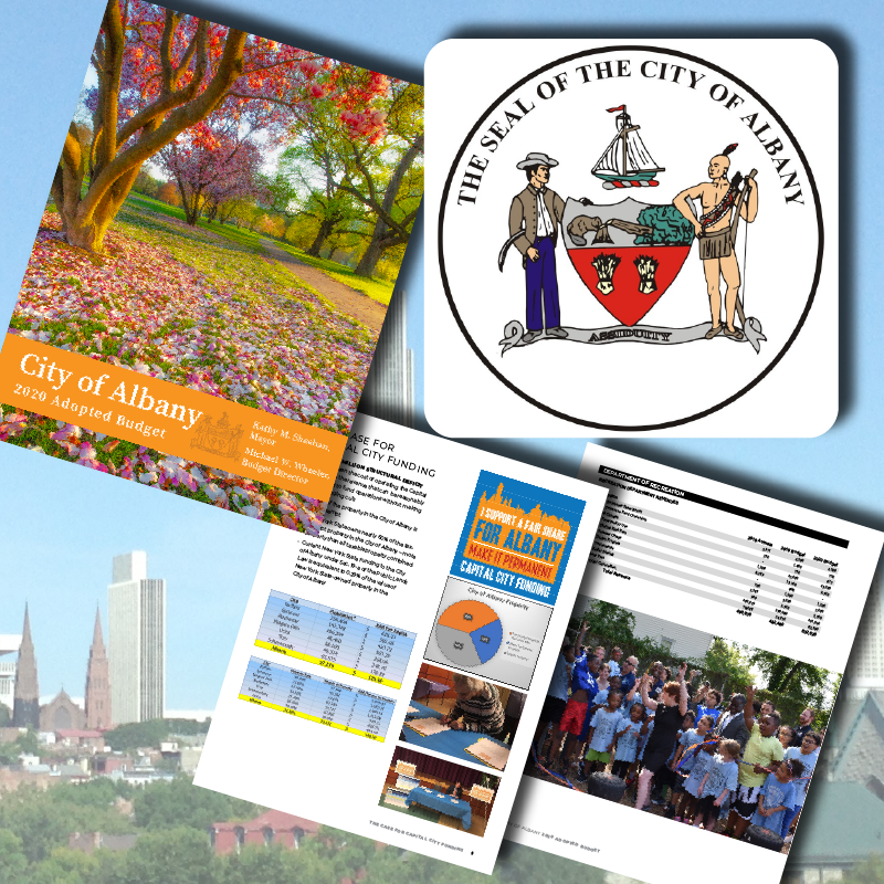 We designed the 2020 and 2021 Budget Book for the City of Albany